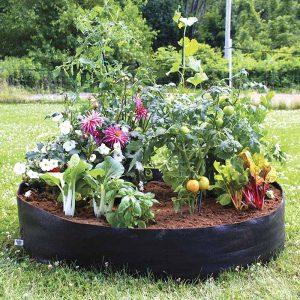 big bag bed mini smart pot
