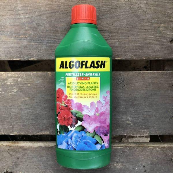 Engrais pour plantes acidophiles