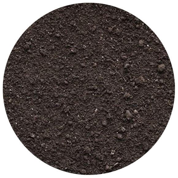 terre de surface top Soil
